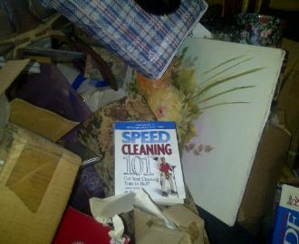 Speed Cleaning Self Help Book